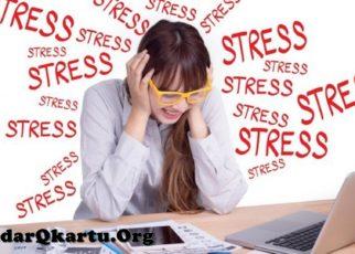 7 Makanan Yang Bisa Menghilangkan Stres