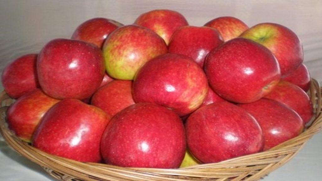 8 Jenis Apel dari Merah sampai Hijau